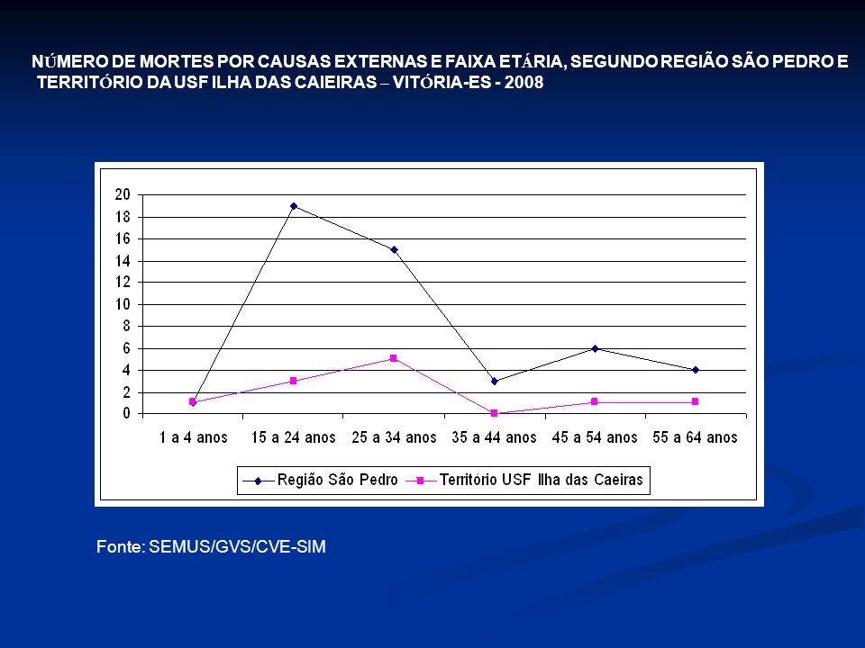 NÚMERO DE MORTES POR CAUSAS EXTERNAS E FAIXA ETÁRIA, SEGUNDO REGIÃO SÃO PEDRO E