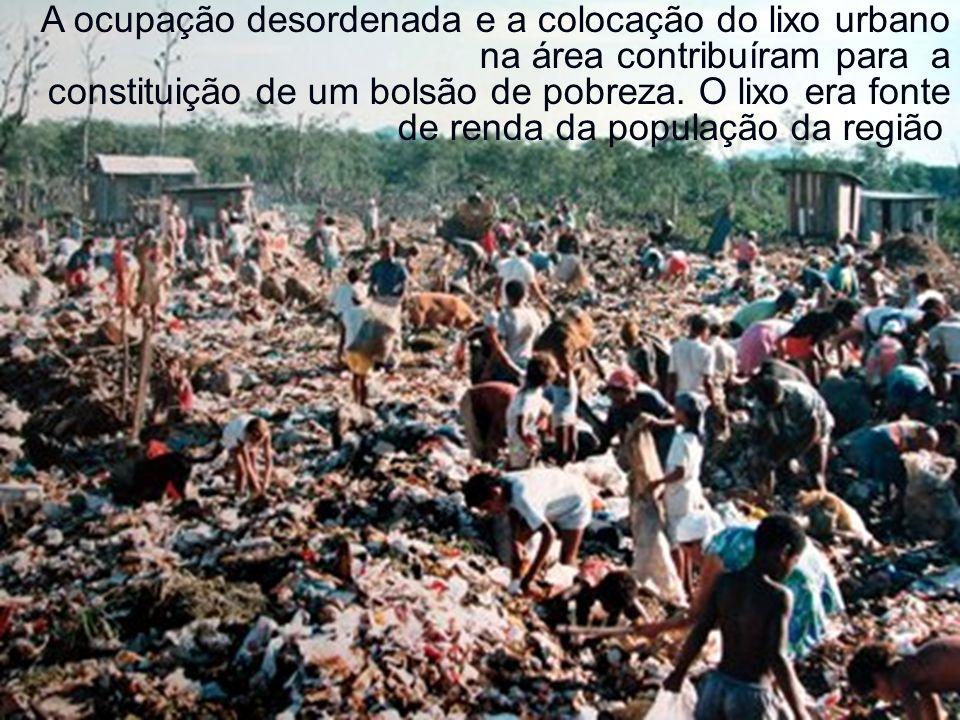 A ocupação desordenada e a colocação do lixo urbano na área contribuíram para a