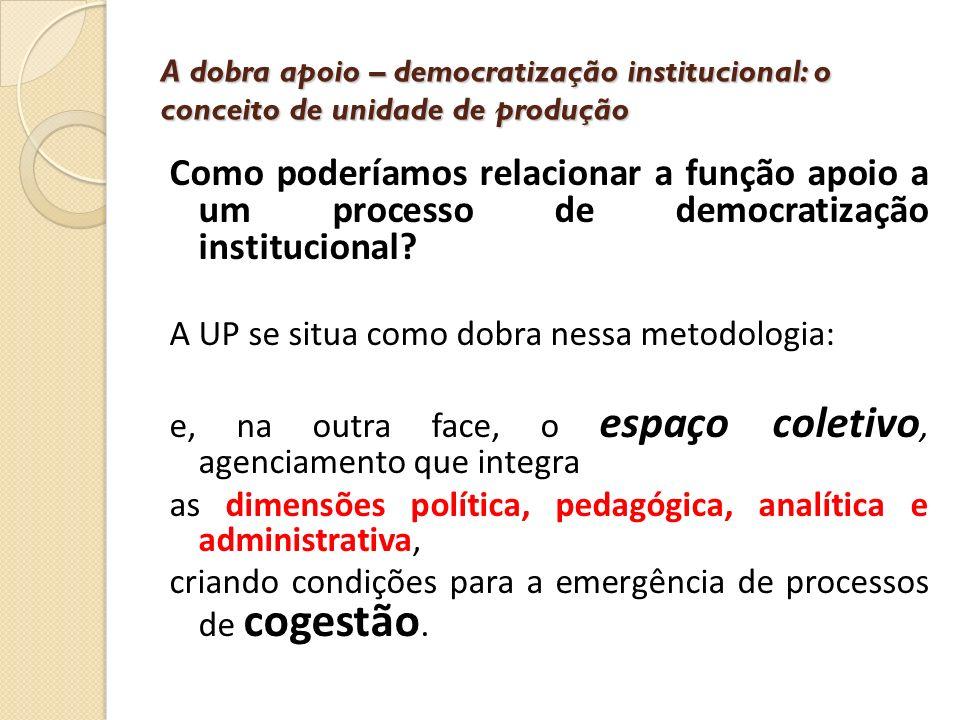 A dobra apoio – democratização institucional: o conceito de unidade de produção