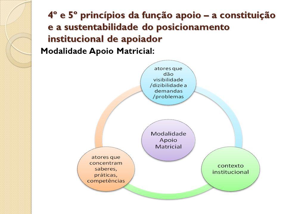 4º e 5º princípios da função apoio – a constituição e a sustentabilidade do posicionamento institucional de apoiador