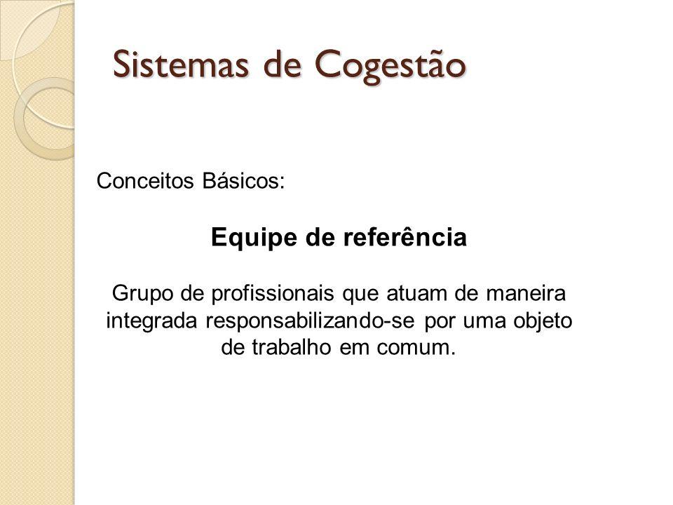 Sistemas de Cogestão Equipe de referência Conceitos Básicos: