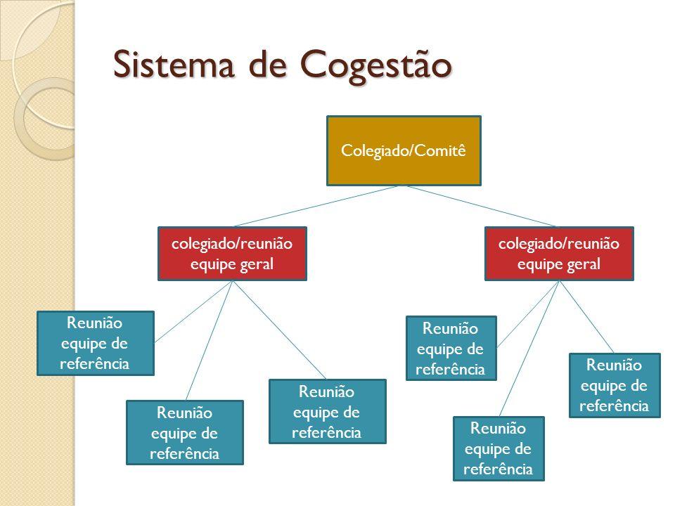 Sistema de Cogestão Colegiado/Comitê colegiado/reunião equipe geral