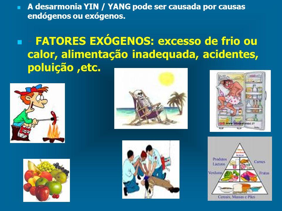 A desarmonia YIN / YANG pode ser causada por causas endógenos ou exógenos.