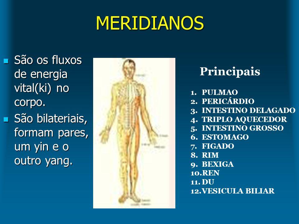 MERIDIANOS São os fluxos de energia vital(ki) no corpo. Principais