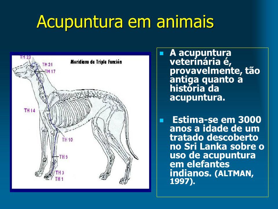 Acupuntura em animais A acupuntura veterinária é, provavelmente, tão antiga quanto a história da acupuntura.