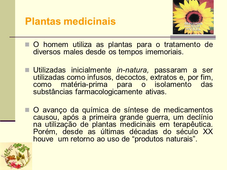 Plantas medicinais O homem utiliza as plantas para o tratamento de diversos males desde os tempos imemoriais.