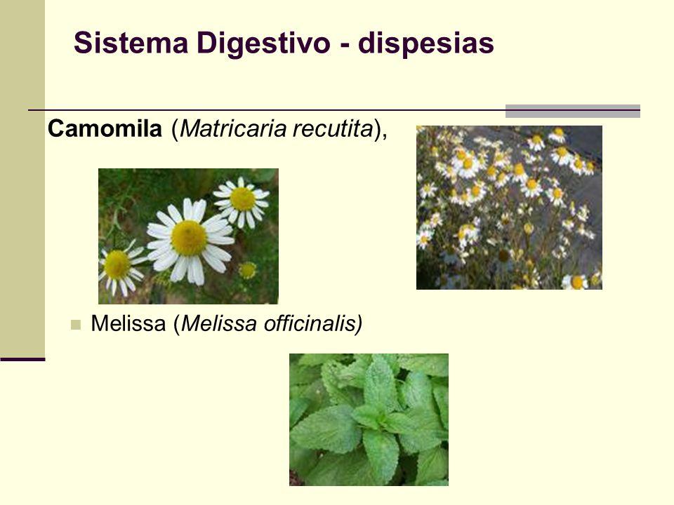 Sistema Digestivo - dispesias