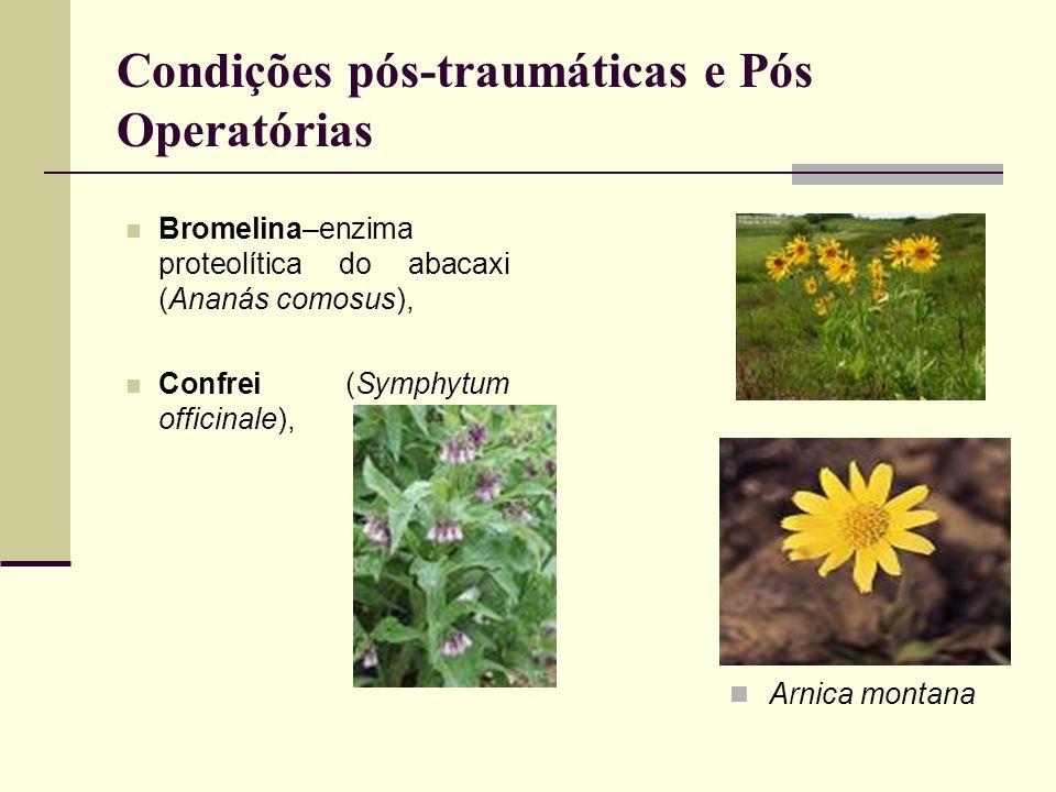 Condições pós-traumáticas e Pós Operatórias