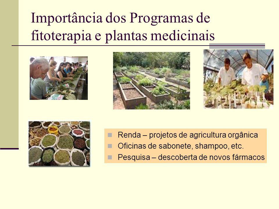 Importância dos Programas de fitoterapia e plantas medicinais