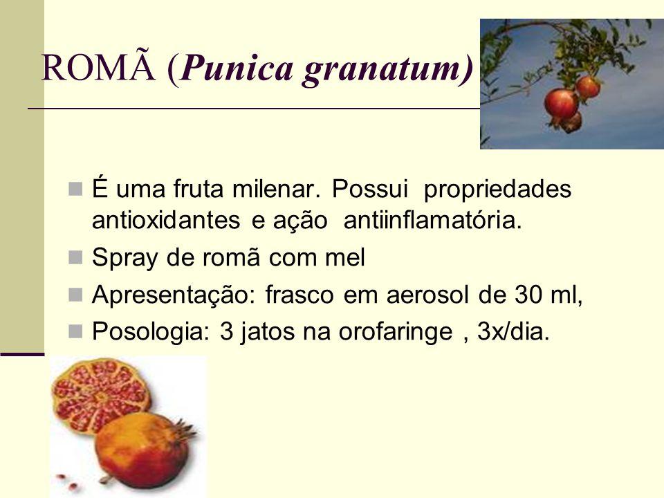 ROMÃ (Punica granatum)