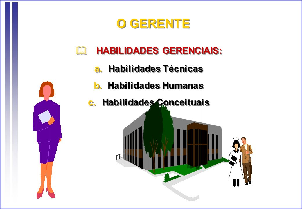 HABILIDADES GERENCIAIS: Habilidades Conceituais