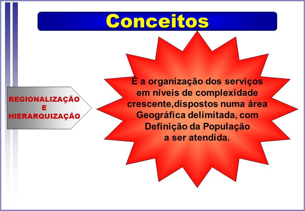 Conceitos É a organização dos serviços em níveis de complexidade
