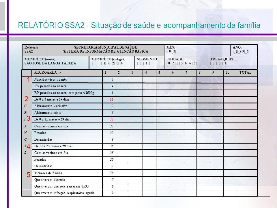 RELATÓRIO SSA2 - Situação de saúde e acompanhamento da família