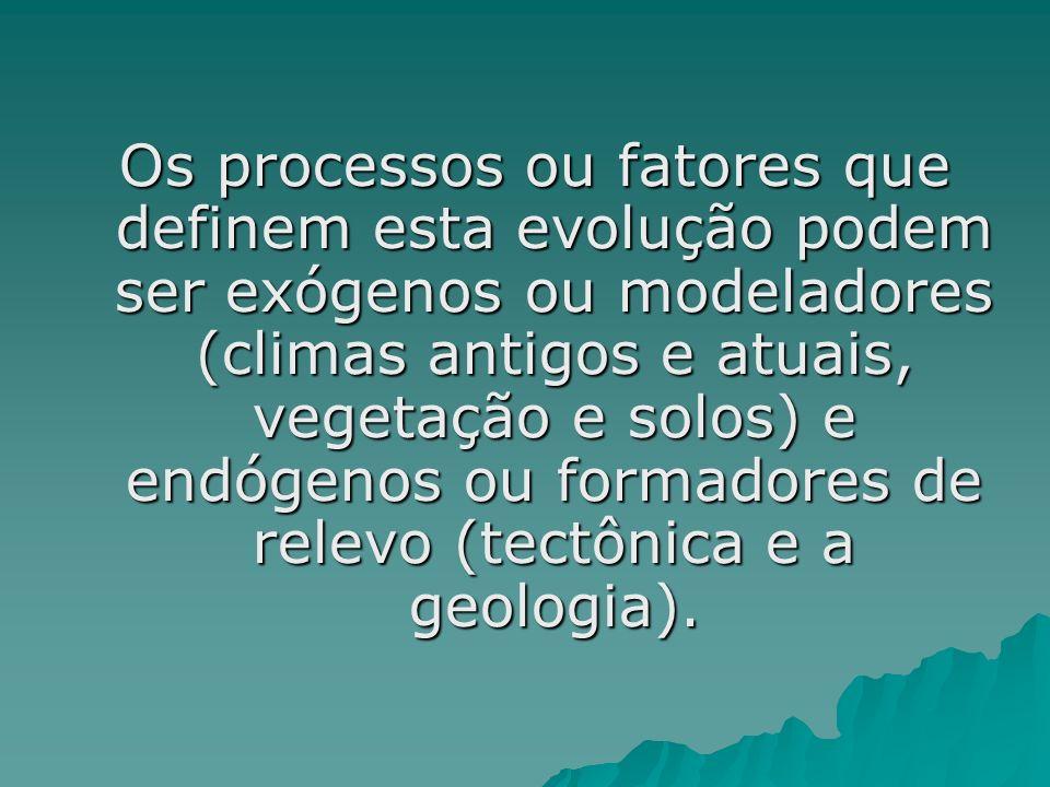 Os processos ou fatores que definem esta evolução podem ser exógenos ou modeladores (climas antigos e atuais, vegetação e solos) e endógenos ou formadores de relevo (tectônica e a geologia).