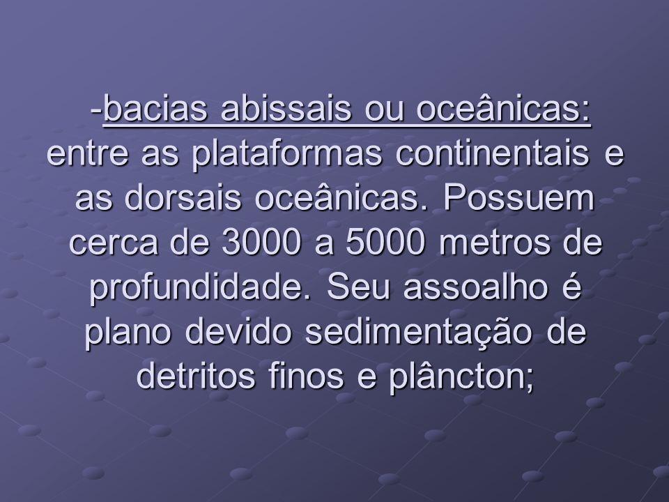 -bacias abissais ou oceânicas: entre as plataformas continentais e as dorsais oceânicas.