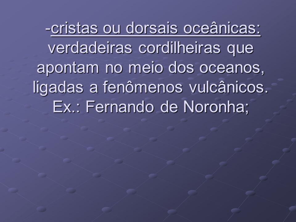 -cristas ou dorsais oceânicas: verdadeiras cordilheiras que apontam no meio dos oceanos, ligadas a fenômenos vulcânicos.