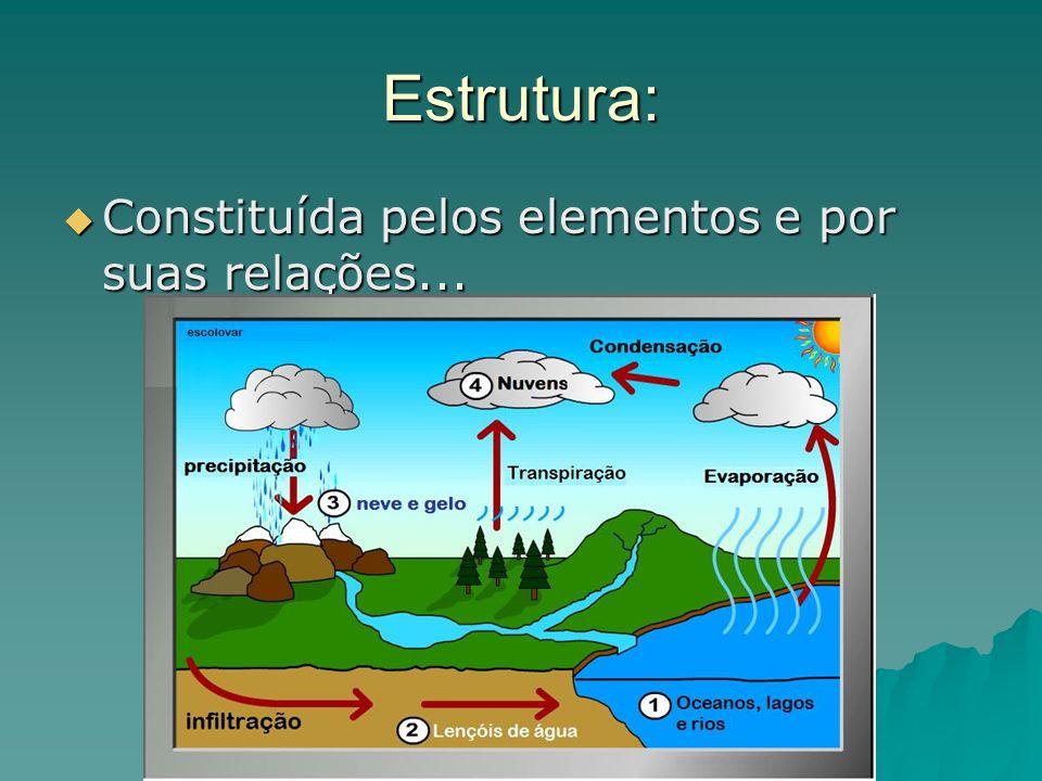 Estrutura: Constituída pelos elementos e por suas relações...