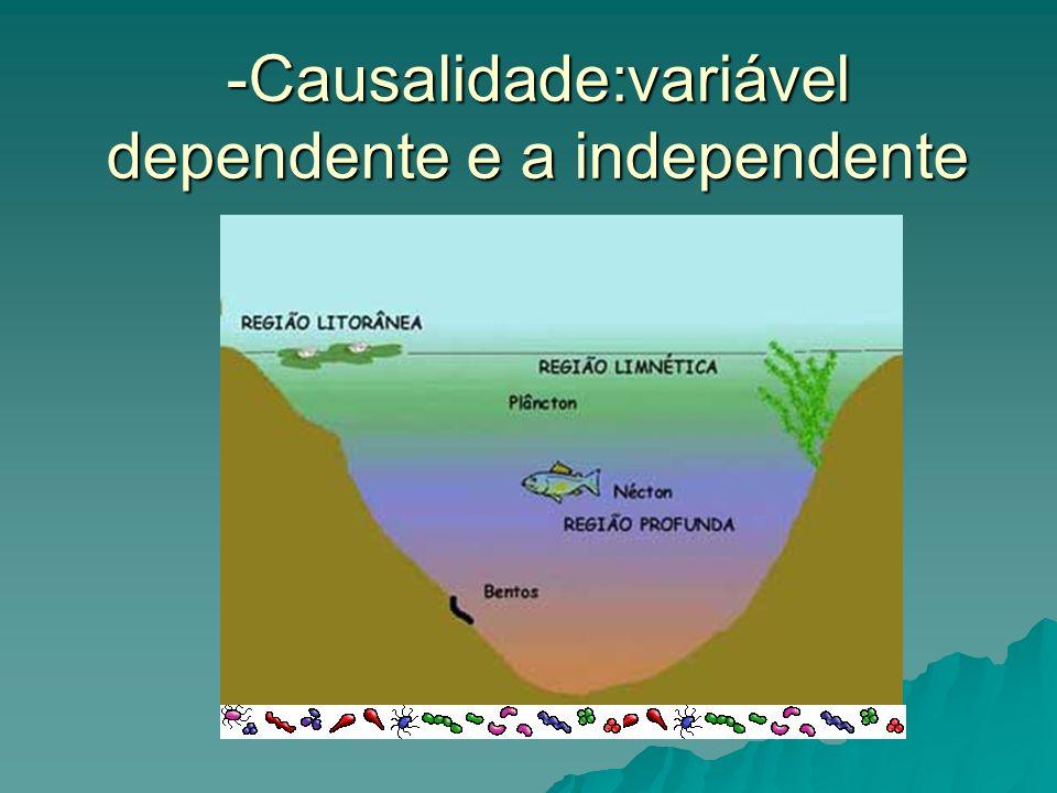 -Causalidade:variável dependente e a independente
