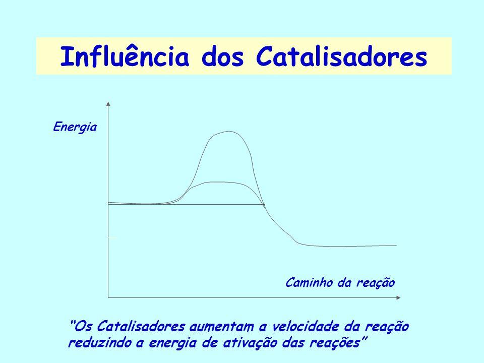 Influência dos Catalisadores