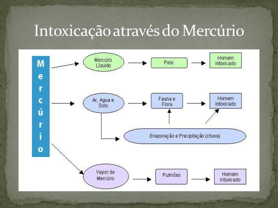 Intoxicação através do Mercúrio