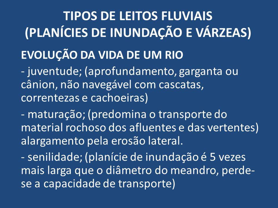 TIPOS DE LEITOS FLUVIAIS (PLANÍCIES DE INUNDAÇÃO E VÁRZEAS)
