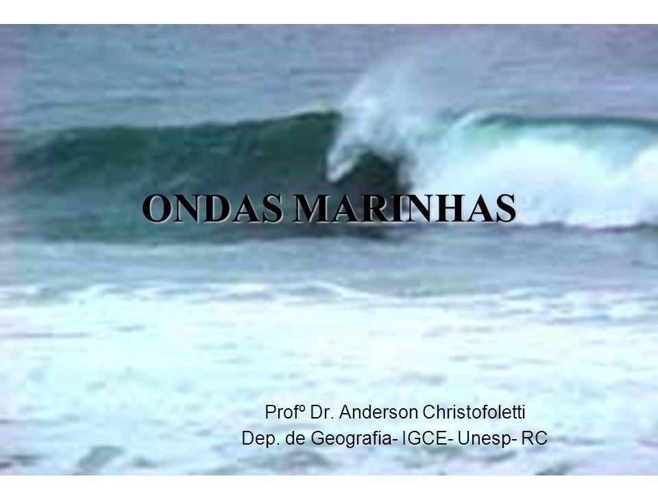 Profº Dr. Anderson Christofoletti Dep. de Geografia- IGCE- Unesp- RC