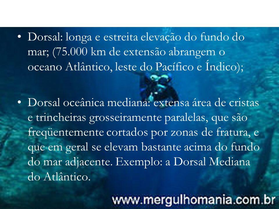 Dorsal: longa e estreita elevação do fundo do mar; (75