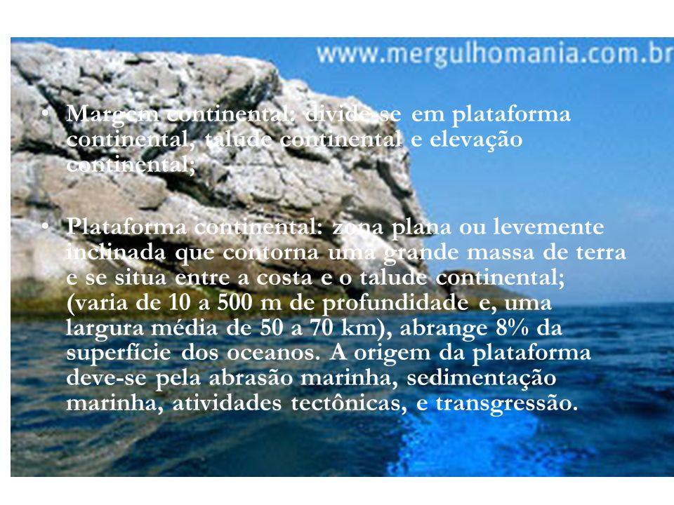 Margem continental: divide-se em plataforma continental, talude continental e elevação continental;