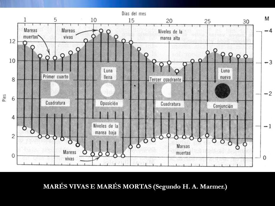 MARÉS VIVAS E MARÉS MORTAS (Segundo H. A. Marmer.)