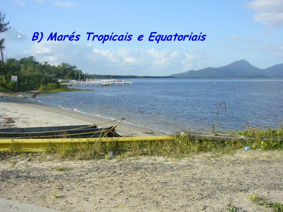 B) Marés Tropicais e Equatoriais