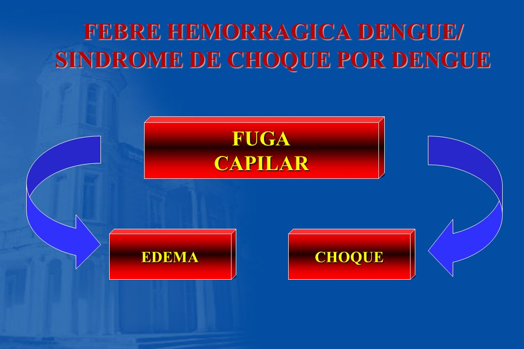 FEBRE HEMORRAGICA DENGUE/ SINDROME DE CHOQUE POR DENGUE