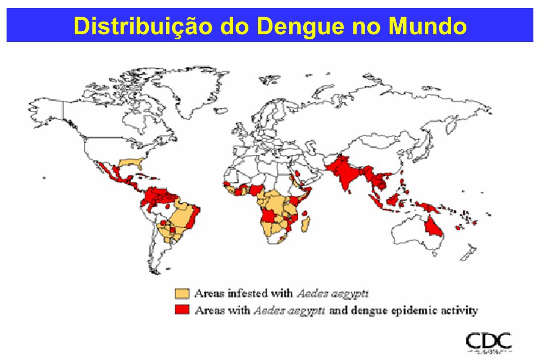Distribuição do Dengue no Mundo