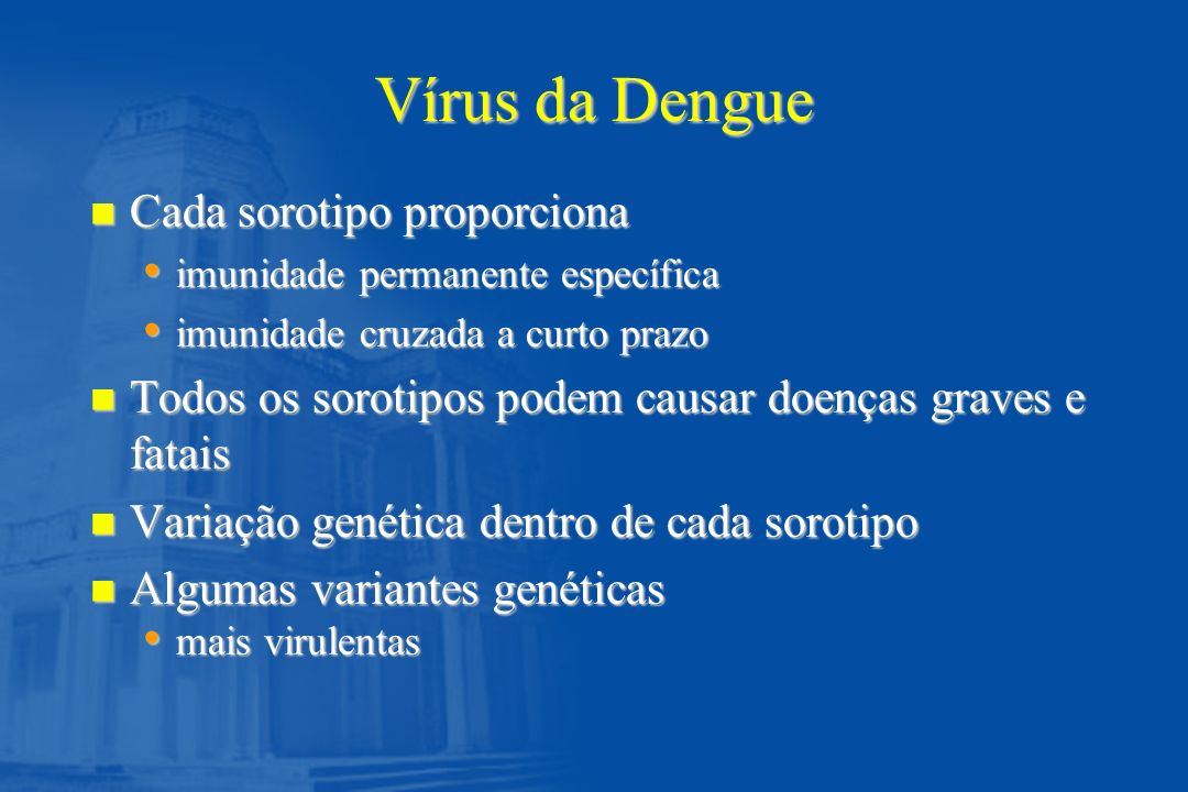 Vírus da Dengue Cada sorotipo proporciona