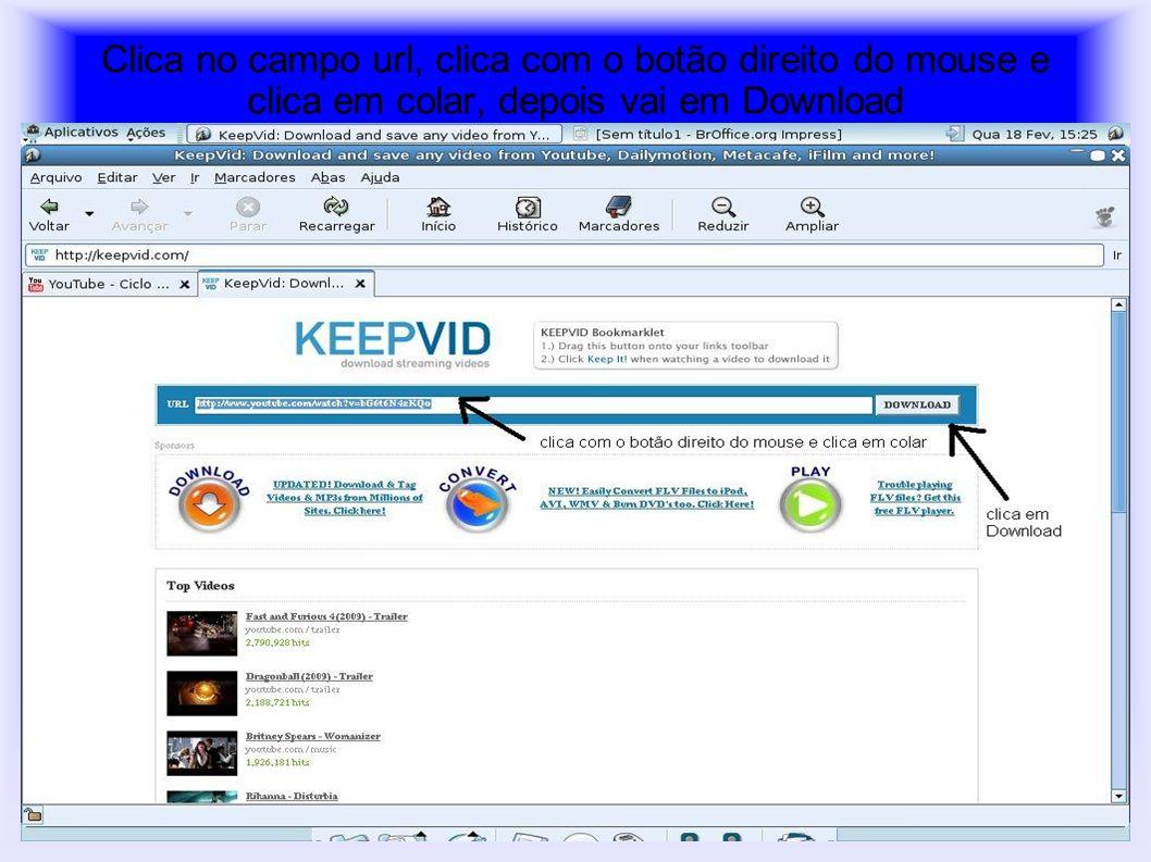 Clica no campo url, clica com o botão direito do mouse e clica em colar, depois vai em Download