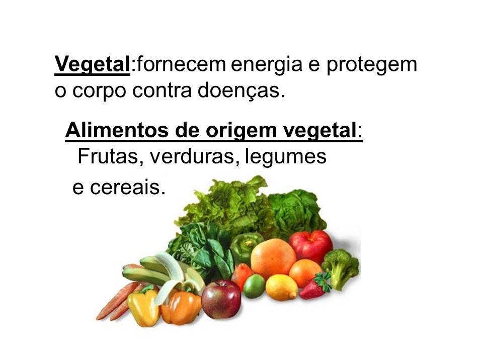 Vegetal:fornecem energia e protegem