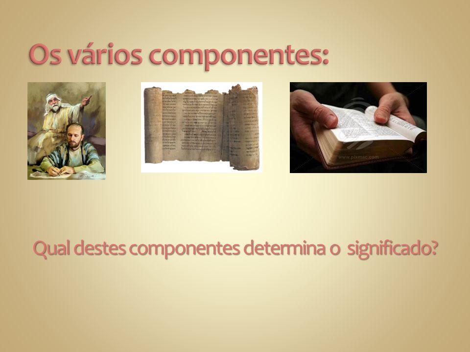 Os vários componentes: