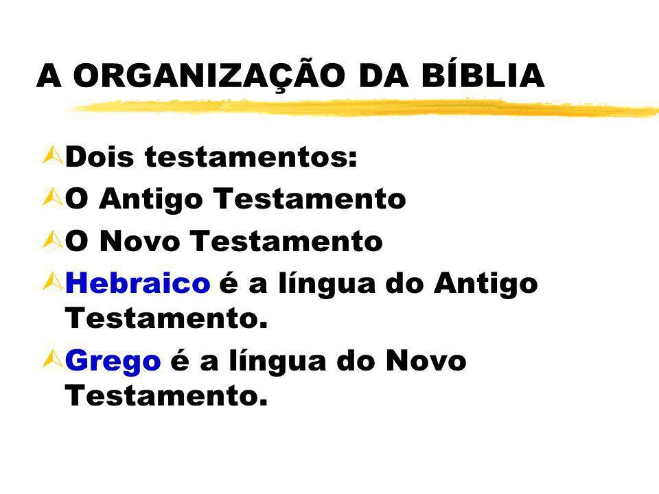 A ORGANIZAÇÃO DA BÍBLIA