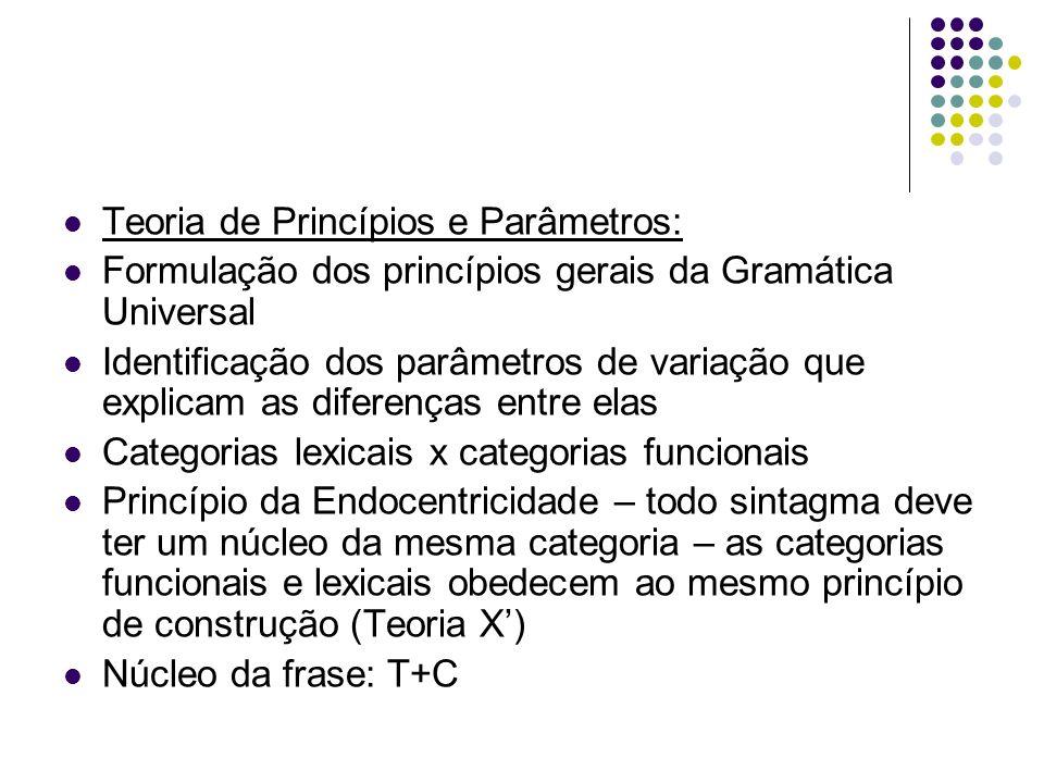 Teoria de Princípios e Parâmetros:
