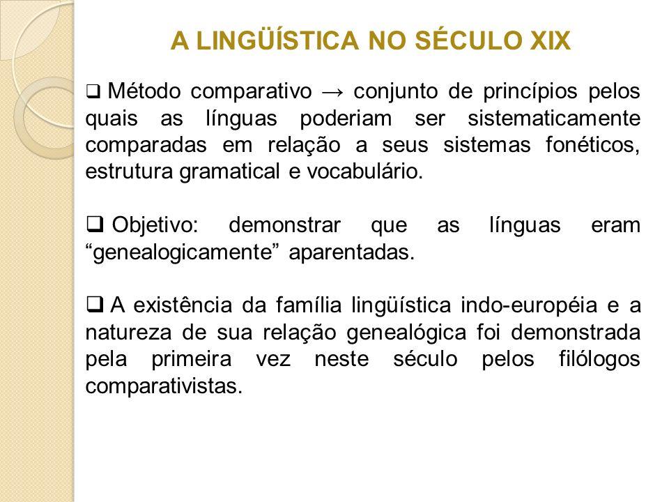 A LINGÜÍSTICA NO SÉCULO XIX