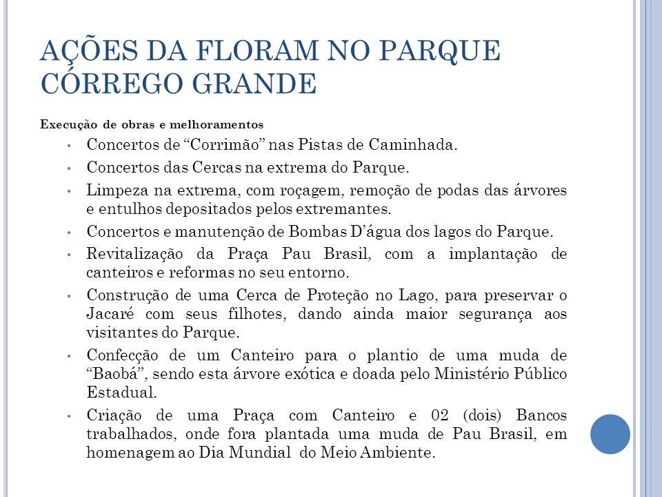 AÇÕES DA FLORAM NO PARQUE CÓRREGO GRANDE