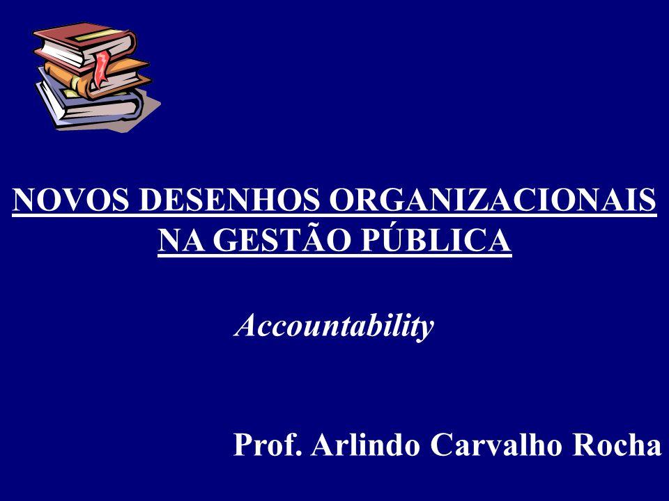 NOVOS DESENHOS ORGANIZACIONAIS NA GESTÃO PÚBLICA