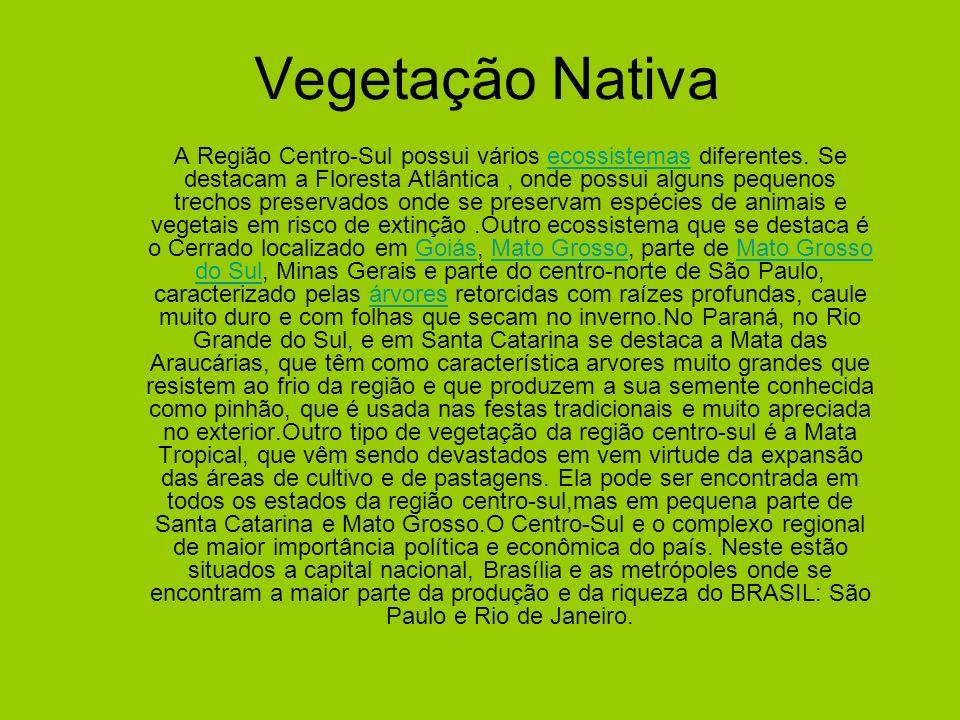 Vegetação Nativa