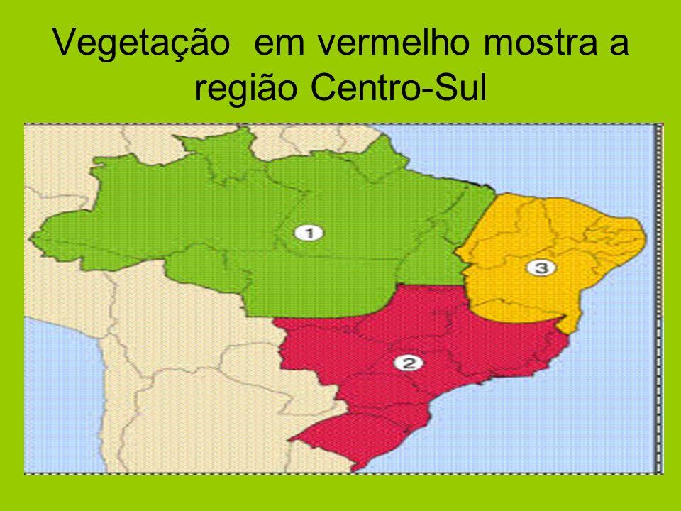 Vegetação em vermelho mostra a região Centro-Sul