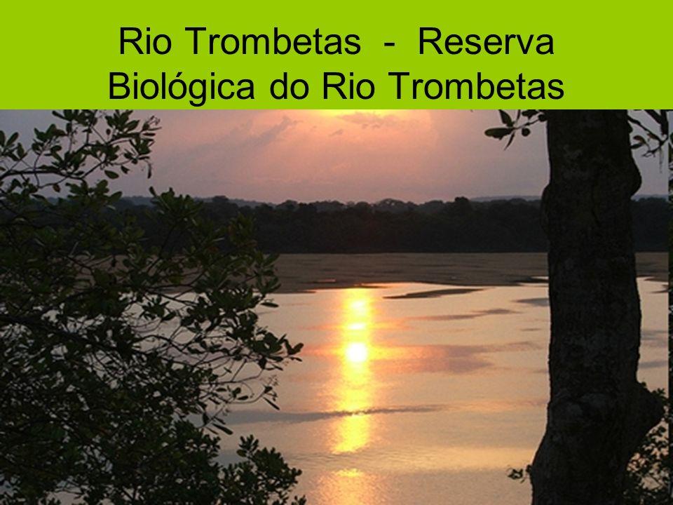 Rio Trombetas - Reserva Biológica do Rio Trombetas