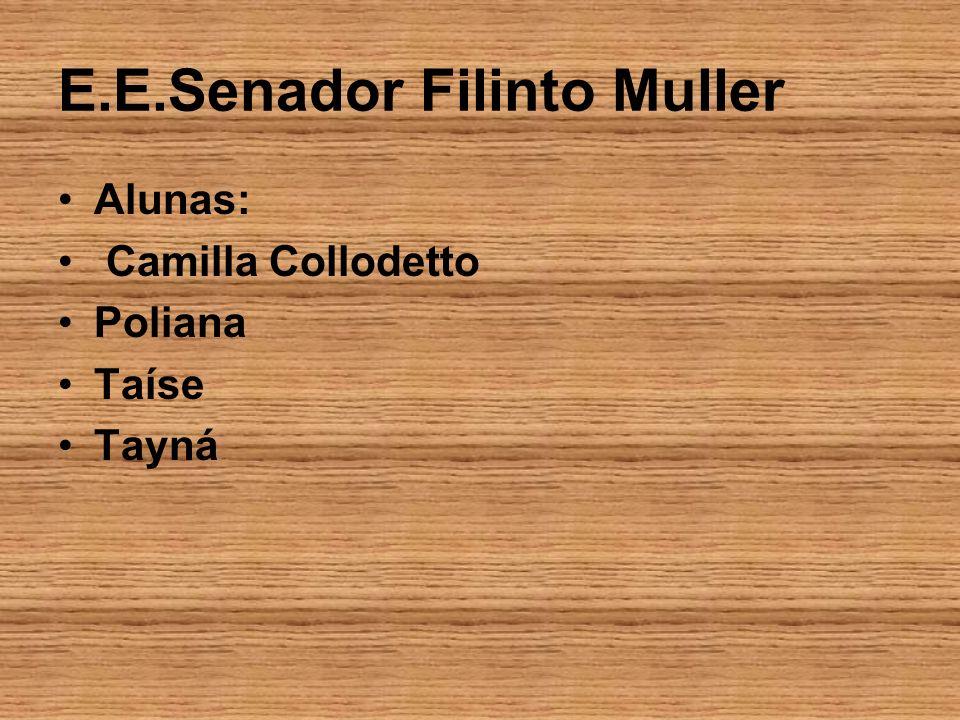 E.E.Senador Filinto Muller