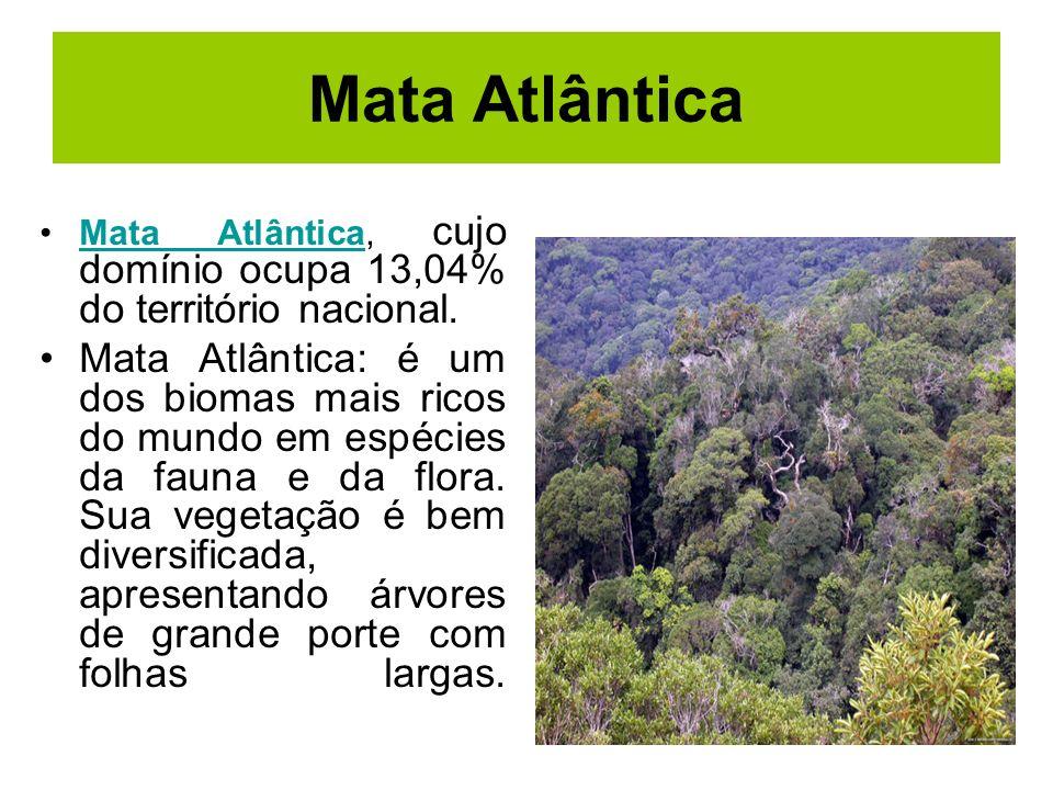 Mata Atlântica Mata Atlântica, cujo domínio ocupa 13,04% do território nacional.