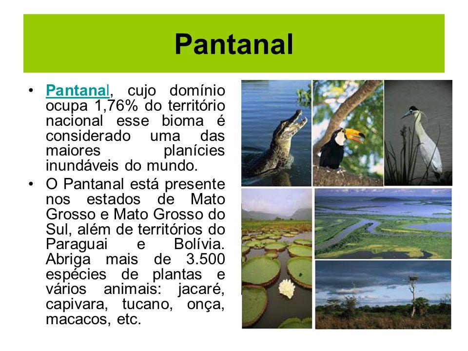 Pantanal Pantanal, cujo domínio ocupa 1,76% do território nacional esse bioma é considerado uma das maiores planícies inundáveis do mundo.