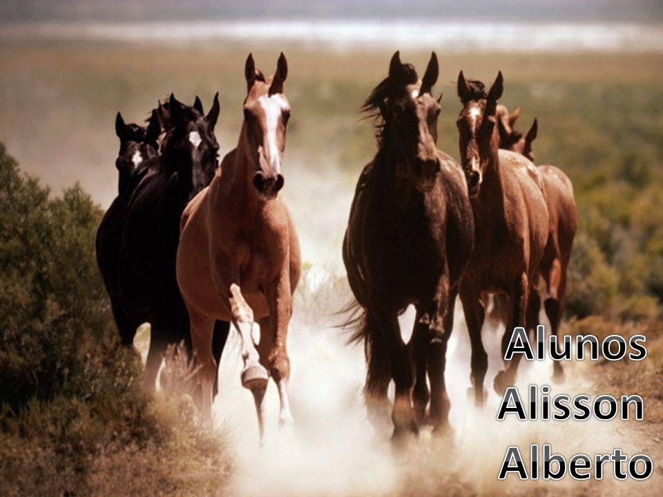 Alunos Alisson Alberto