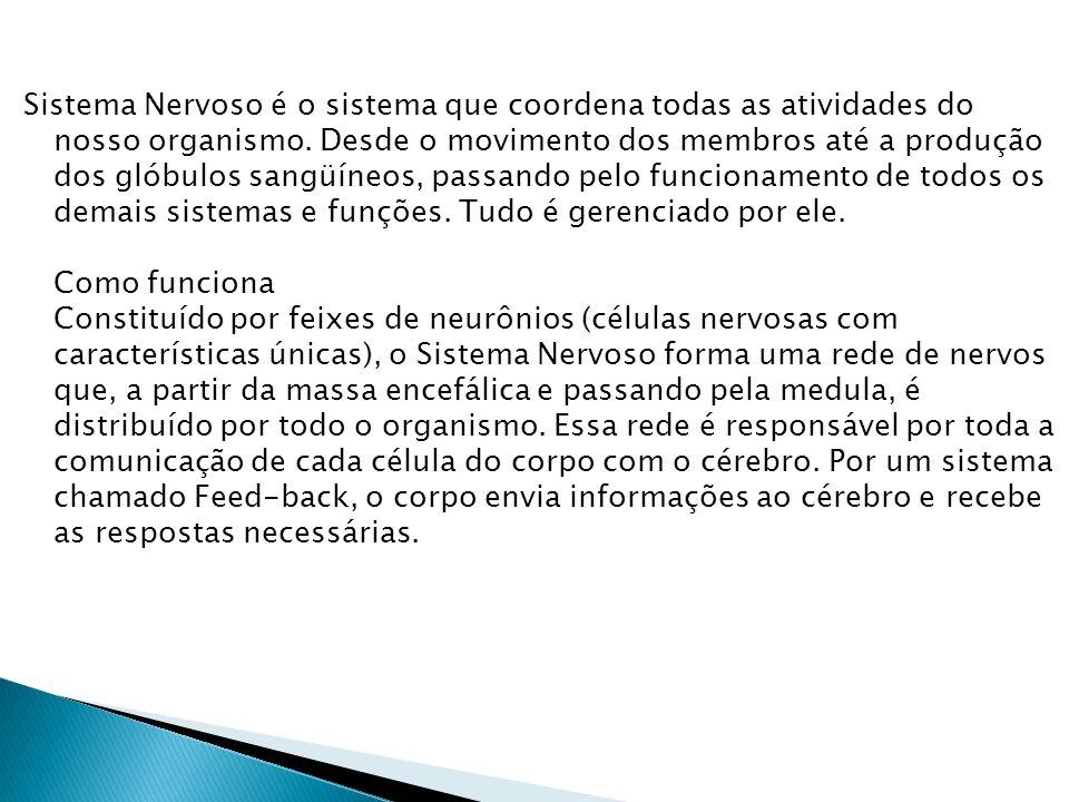 Sistema Nervoso é o sistema que coordena todas as atividades do nosso organismo.