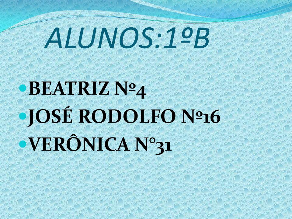 ALUNOS:1ºB BEATRIZ Nº4 JOSÉ RODOLFO Nº16 VERÔNICA N°31